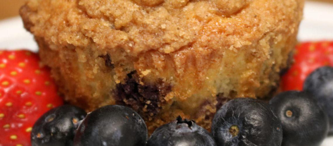 Southern Fellow Blueberry Muffin